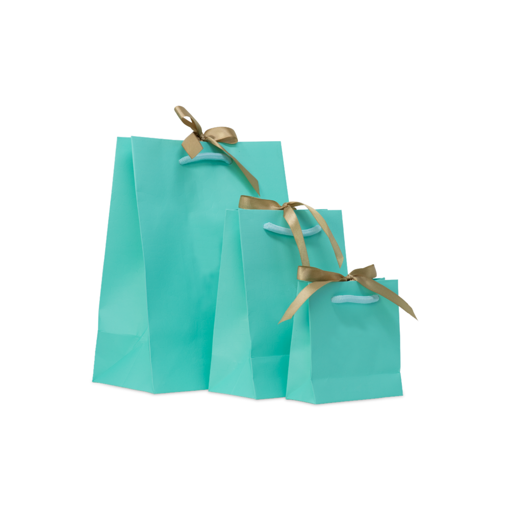 Custom Rope Handle Gift Bags